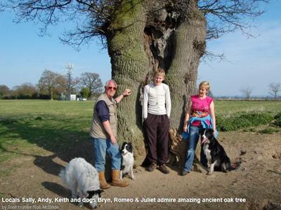 Salop NWR Cockoo tree 400x300