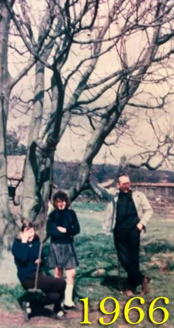 GTOD21 1 Memories Trees 1966