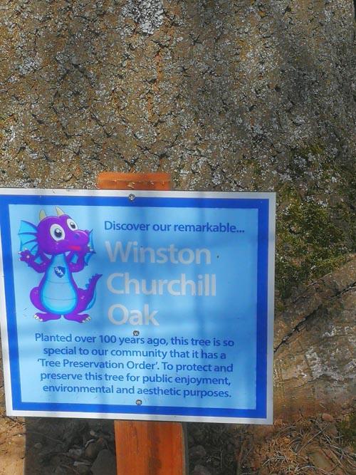 gtod21 4 Winston Churchill Oak sign OMA 500x667